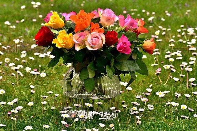 váza na louce