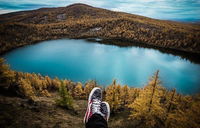 lesy u jezera