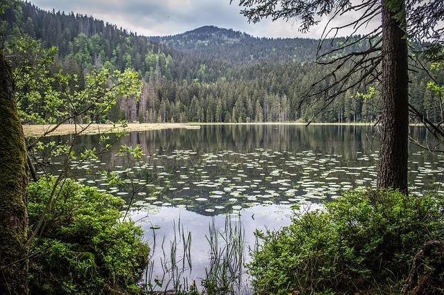 javorské jezero